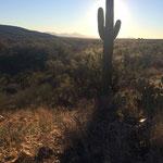 Tucson, Catalina State Park