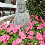お花さんに囲まれたお地蔵さま