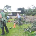 ヒロ教会の庭掃除で出た枯れ木を清掃