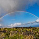 ハワイ島でよくみられる虹