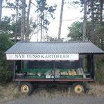 Der Marktstand von Tunø