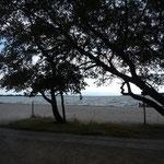 Radtour an der Langelinje Strandpromenade