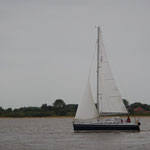 "Dehler 29 ""Nikanju"" vom SVWS- das blaue Boot"