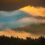 Nebelstimmung  Dahner Felsenland