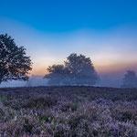 Mehlinger Heide vor Sonnenaufgang