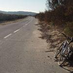 La route menant à la presqu'île de Giens.