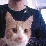 Autoportrait au chat.