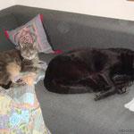 Max und Luna