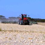 Grubberarbeit auf dem Feld