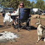 Mataranka -> Känguru zu besuch beim Frühstück