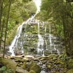 Wasserfälle im Westen