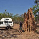 Kakadu NP Termiten Hügeli