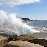 Blowhole Ostküste