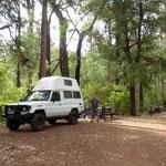 Schöne Wälder und Camping