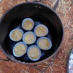 Campoven - Muffin