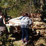 Viele Helferinnen und Helfer stalpeln das Holz am Waldrand.