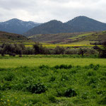 Fields and hills at Pano Koutrafas