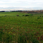 Mesaoria plain below Peristerona, the Peristerona river on the right, Kyrenian Hills in the background in the TRNC