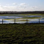 Flooded meadow near Restharrow Scrape