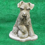 DG21 - Schnauzer with Ball