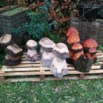 geschnitzte Pilze