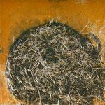 widerborstig, Intagliotypie Serie 2012, 20x20