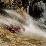 Rote Krabbe / La Gomera