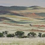 Farben der Namib