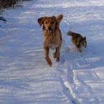 rennen mit Twini