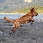 ich kann fliegen!