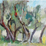 """Olivenhain in Ligurien""   30 x 24 cm  Oel auf Leinwand  240.- Euro  m.R."