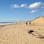 La plage du chemin de la Grand-Pointe - Repérage du parcours - Vert'Olonne