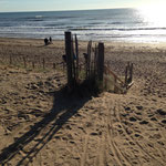 La plage des Granges - Repérage du parcours - Vert'Olonne