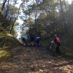 Le chemin coupe feu - Repérage du parcours - Vert'Olonne