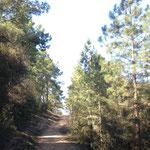 La Butte de ski - Repérage du parcours - Vert'Olonne
