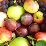Äpfel, Birnen und Pflaumen