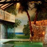 Forêt tropicale - Décor dans une piscine couverte - Monties - Gers