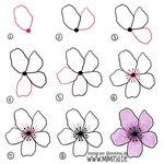 Bullet Journal und Sketchnotes - Doodles - How to draw - Malvorlage - Anleitung - Kirschblüte - Blume 2