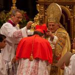 Im feierlichen Konsistorium vom 20. November 2010 nahm ihn Benedikt XVI. als Kardinaldiakon mit der Titeldiakonie Sant'Agata dei Goti in das Kardinalskollegium auf.