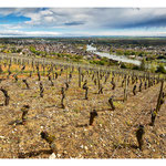 Côte St Jacques - Joigny - Yonne © Nicolas GIRAUD