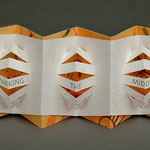 Mid Point (2001) ink jet, Japanese book cloth on covers, edition of thirty, 2.25 x 5 x 1.5 inches displayed, multiple public and private collections
