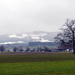 Blick vom Aabach auf den verschneiten Pfannestil