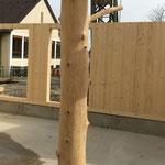 in wohngesunder Massivholzbauweise erstellt