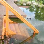 Treppe aus Kamballa/ Iroko