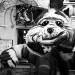 'caught by the bulldog', amsterdam 1985