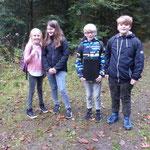 Die Waldforscher