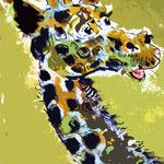 Giraffe  60 x 30 cm, verkauft