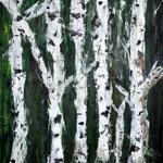 Birkenwald - 2011 - 120 x 100 cm
