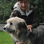 Palpieren der Halswirbel und Der Muskulatur beim Hund