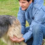 Palpieren des Kniegelenkes beim Hund